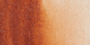 Transparent Mars Brown