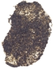 Black Mica Flake (Small) No. 4075