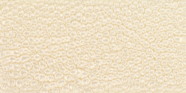 Top 28 eggshell finish benjamin moore 174 interior - Difference between eggshell and satin ...
