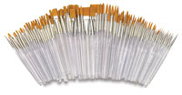 Royal Clear Choice Brush Class Pack