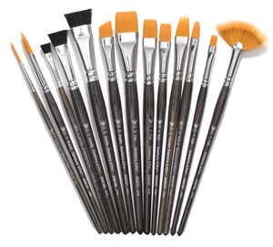 13-Piece Professional Brush Set