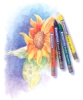 Staedtler Karat Aquarell Crayons