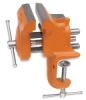 Clamp-On Vise