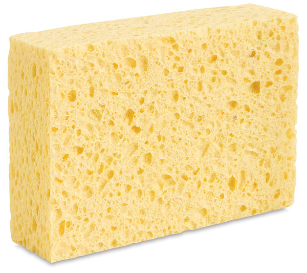 3m Commercial Cellulose Sponges on 3 Times Table Online