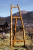 Xylem Rocky Mountain Aspen Display Easel