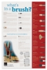 Blick Brush Facts Poster